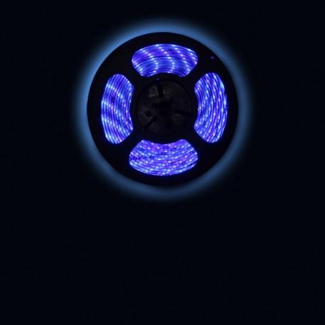 Ruban LED 3528 / 60 LED mètre bleu pour intérieur (IP65)