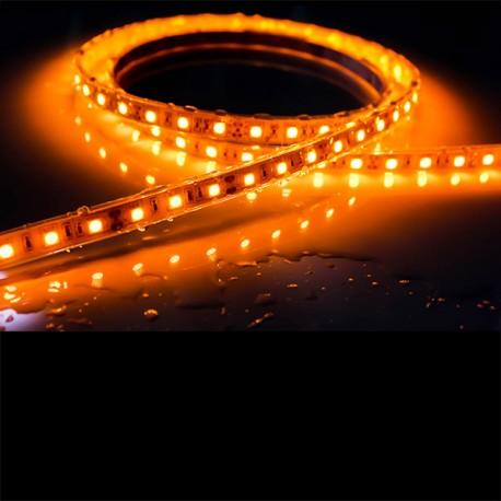 Ruban LED 5050 / 60 LED mètre or étanche (IP68)