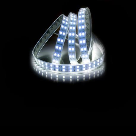 Ruban LED 5050 / 120 LED mètre blanc froid étanche (IP68)