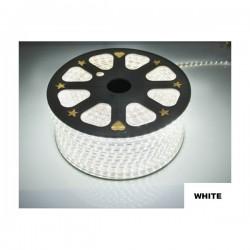 Strip LED 5050 en 25 ou 50 mètres Blanc Froid étanche (IP68)