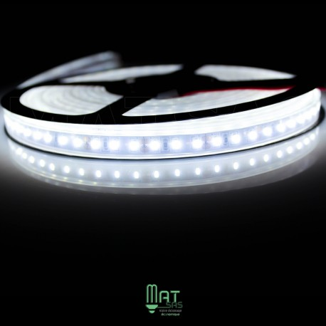 Ruban LED 3014 / 120 LED mètre blanc froid étanche (IP68)