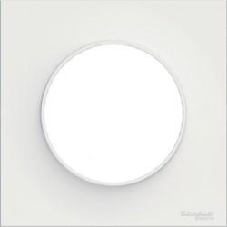 Plaque finition Blanc 1 poste Odace Schneider