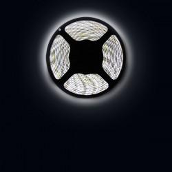 Ruban LED 3528 / 60 LED mètre blanc froid pour intérieur (IP65) longueur 5 mètres