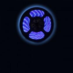 Ruban LED 3528 / 60 LED mètre bleu pour intérieur (IP65) longueur 5 mètres