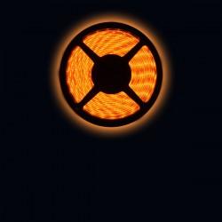 Ruban LED 3528 / 60 LED mètre or pour intérieur (IP65) longueur 5 mètres