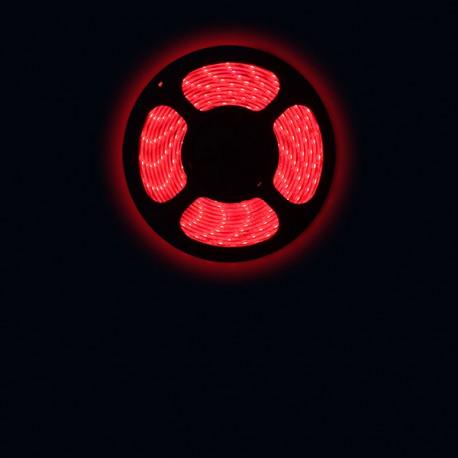 Ruban LED 3528 / 60 LED mètre rouge pour intérieur (IP65) longueur 5 mètres