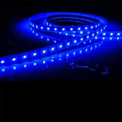 Ruban LED 5050 / 60 LED mètre bleu étanche (IP68)