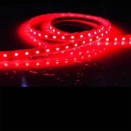 Ruban LED 5050 / 60 LED mètre rouge étanche (IP68) longueur 5 mètres