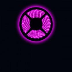 Ruban LED 5050 / 60 LED mètre rose étanche (IP68)