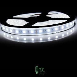 Ruban LED 5050 / 60 LED mètre blanc froid étanche (IP68) longueur 5 mètres