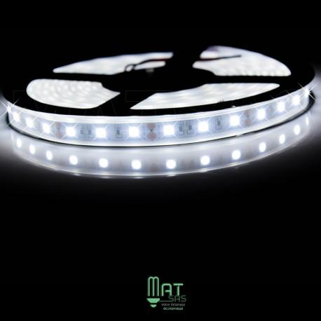 Ruban LED 5050 / 60 LED mètre blanc froid étanche (IP68)