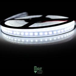 Ruban LED 3014 / 120 LED mètre blanc froid étanche (IP68) longueur 5 mètres