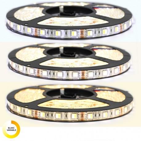 Ruban LED 5050 IP65 Blanc neutre, blanc froid, ou blanc chaud avec télécommande radio longueur 5 mètres